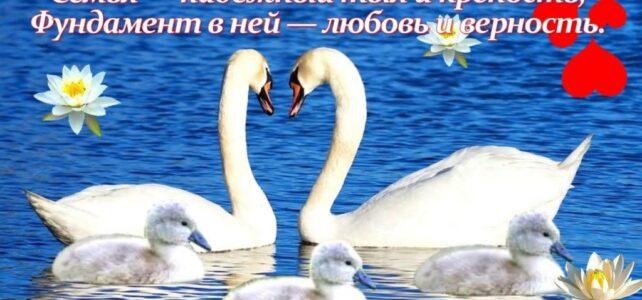 «Любовь и верность».  Фото-челлендж ко дню Любви , семьи и верности